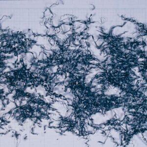 切粉の形状_小カール(50mm以下)